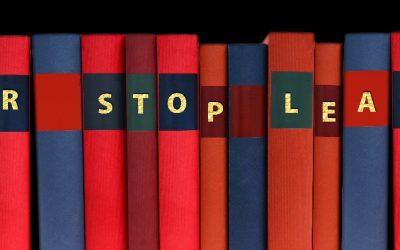 Warum Sie auf Blended Learning vertrauen sollten!